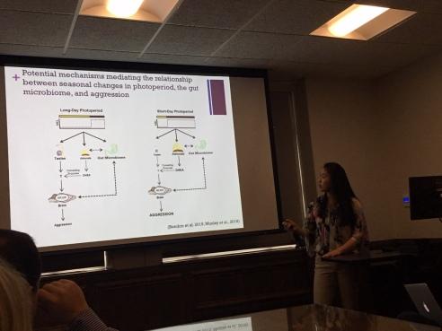 Clarissa defends her undergraduate senior thesis project!